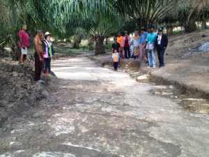 กระบี่ 17 พบเมืองโบราณ  ภายในสวนปาล์น้ำมันหมู่ที่ 1 ตำบลห้วยยูง อำเภอเหนือคลอง จังหวัดกระบี่ 6